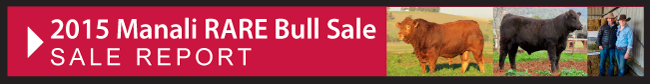 Bull Sale Report July 2015